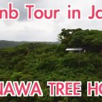Tree House in Okinawa, Airbnb tour in Japan